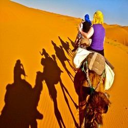 Fes desert