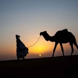 3 Days Marrakech Fes Desert tour